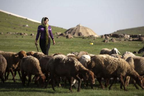 دختر چوپان - عشایر کرمانشاه