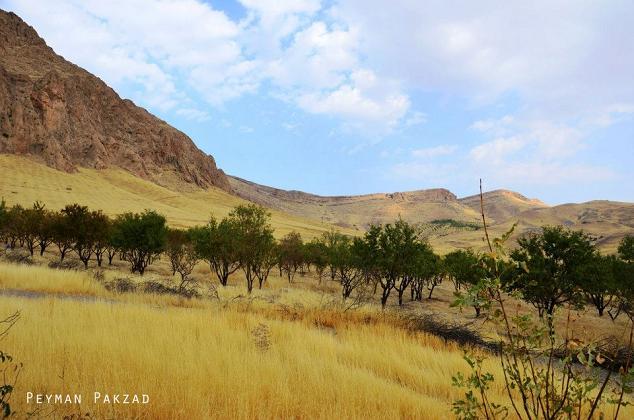 روستای سرجوق - شهرستان هرسین