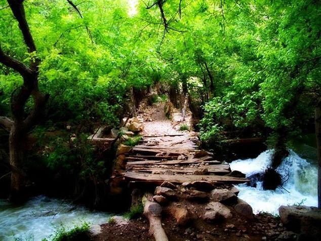 ریژاو (ریجاب) - شهرستان سرپل ذهاب