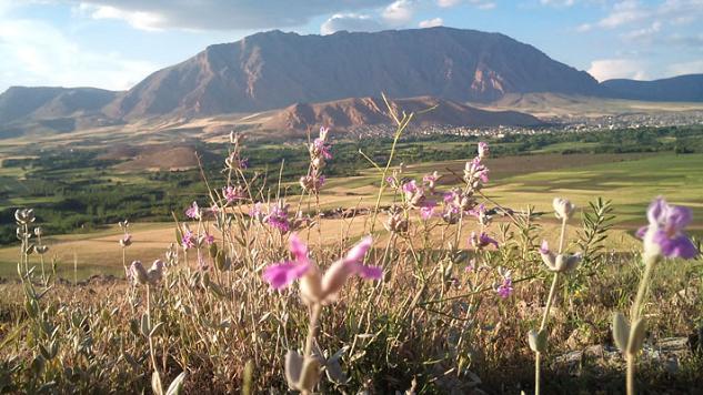 دورنمای شهر هرسین و کوه شیرز و تپه ی دیوانگه