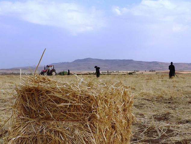 منطقه ی هلشی - شهرستان کرمانشاه